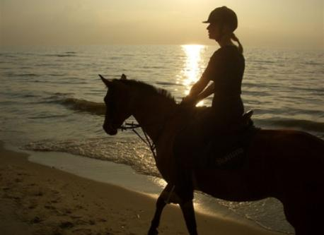 Horse-riding at the seashore