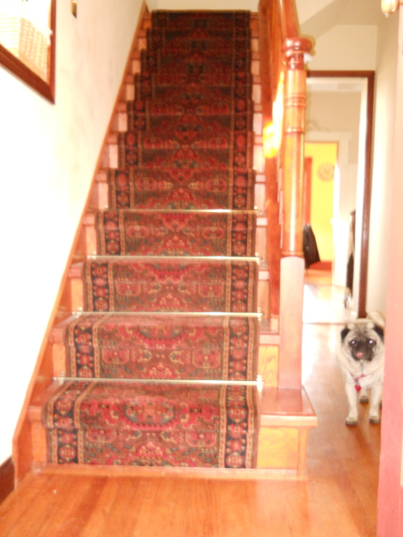 Hallway (with our pug, Ollie)