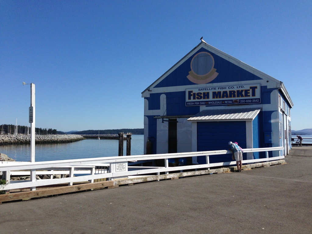 Sidney fish market (5 minutes away)
