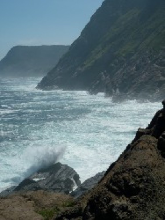 Nearby East Coast Trail: paradise for hikers