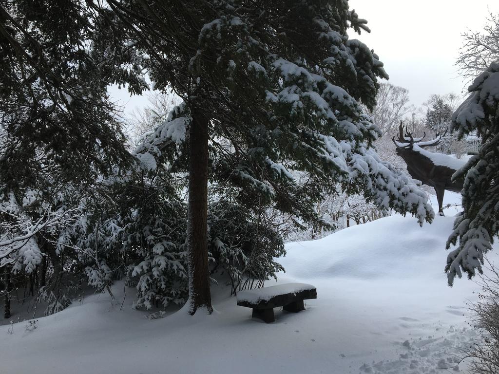 A winter scene in the park