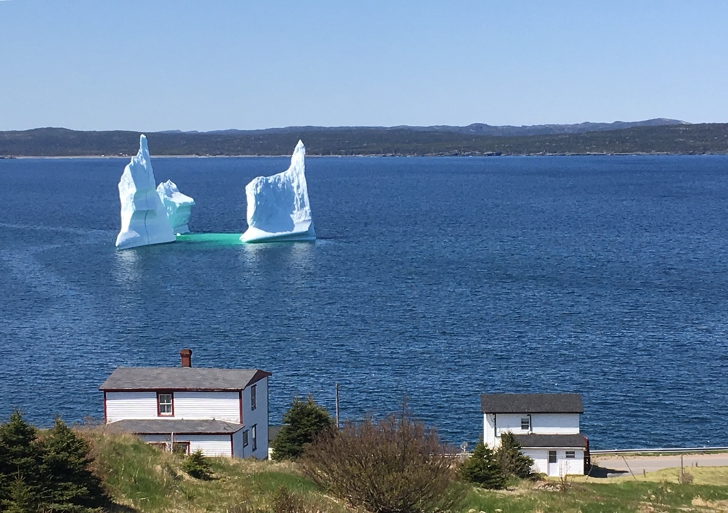 With luck, you'll see majestic icebergs (April-June)