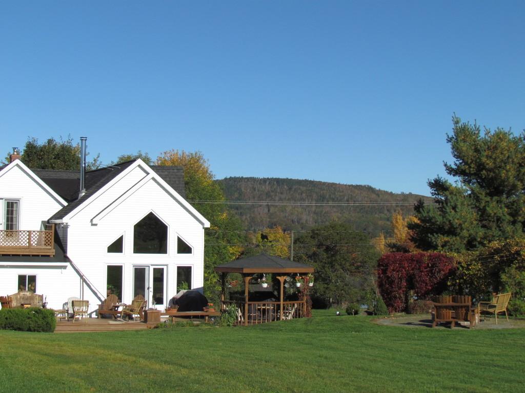 back of house/yard