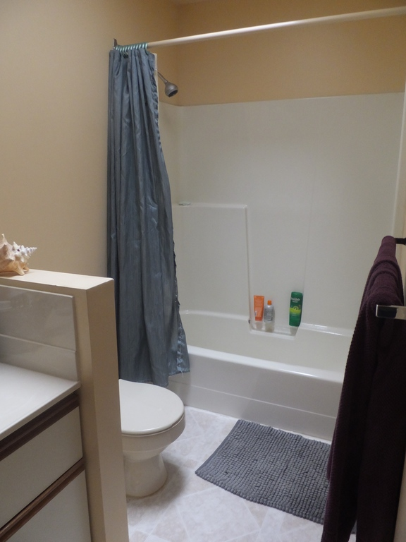 En-suite bathroom in master bedroom