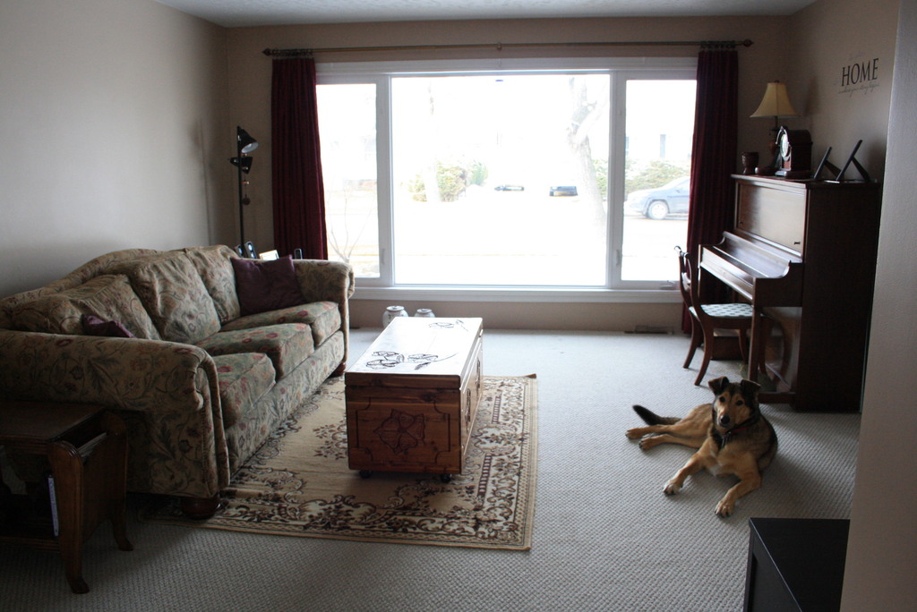 Living room, faces West. Our dog and cat will not be in the house during your visit.