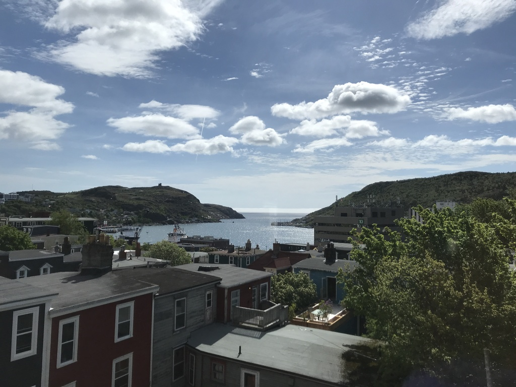 Summer view of St. John's harbour.