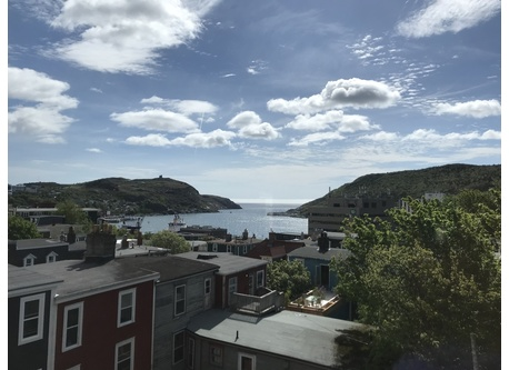 Summer view of St. John's harbour.