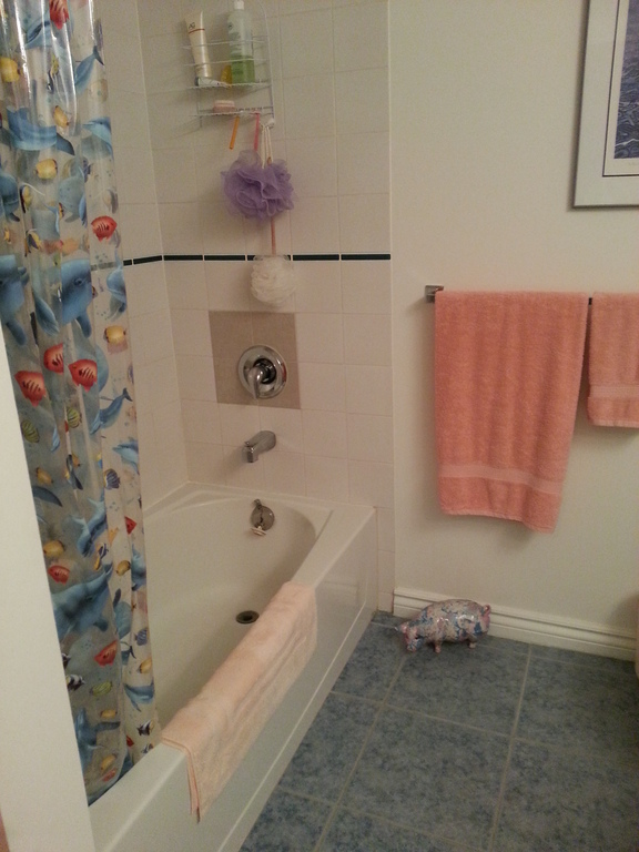 master en suite with tub and shower