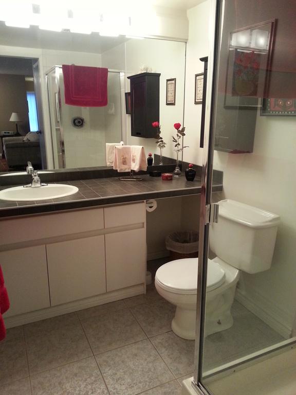 guest bathroom, walk-in shower