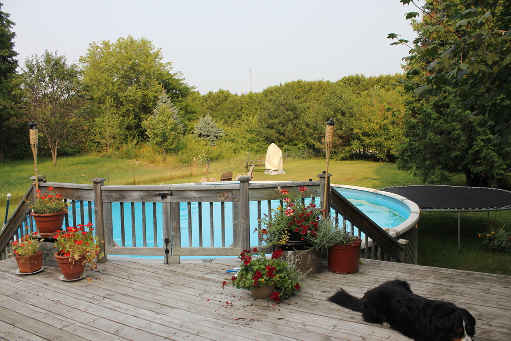 piscine et jardin
