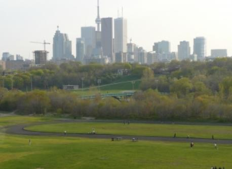 Riverdale Park-CN Tower in the distance