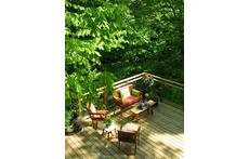 our deck overlooking the forest - hawks nest each year in the tree behind our home