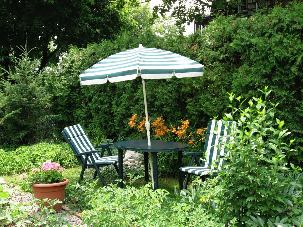 Spacious leafy garden