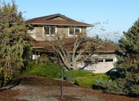 Our home in winter - the garden is full of blossoming trees and shrubs in summer