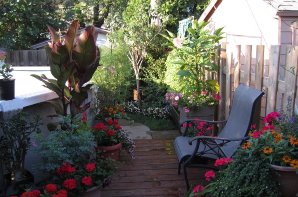 Jardin de fleurs et piscine