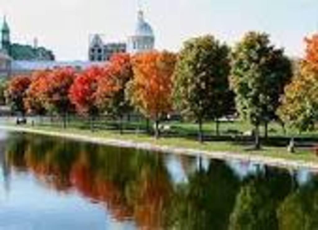 Vue sur le Vieux Montréal