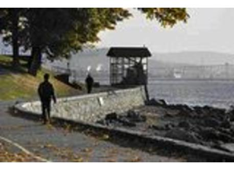 Easily enjoy Stanley Park and it's beautiful 9km seawall