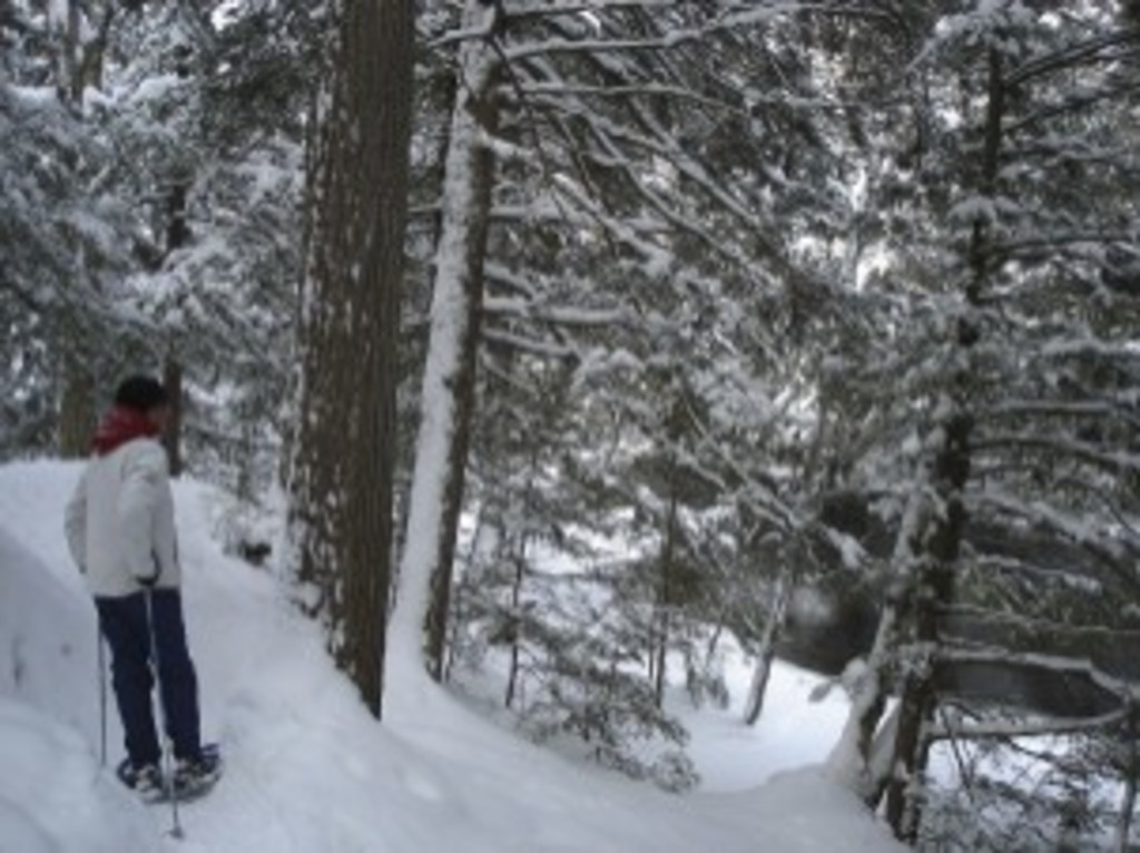 Snowshoeing at Ragged Falls, 10 minutes drive from cottage