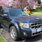 Late model Hybrid SUV available for exchange guests
