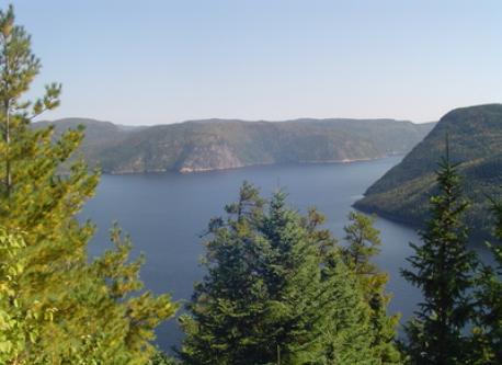 Fjord du Saguenay (1h de Charlevoix)