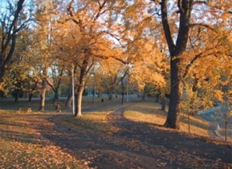 Lafontaine Park / Parc Lafontaine