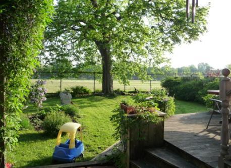 Our Backyard (no neighbours!!!)