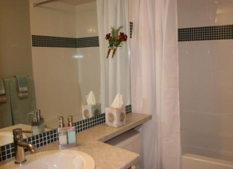 Full Bathroom with Soaker Tub/Shower Combination