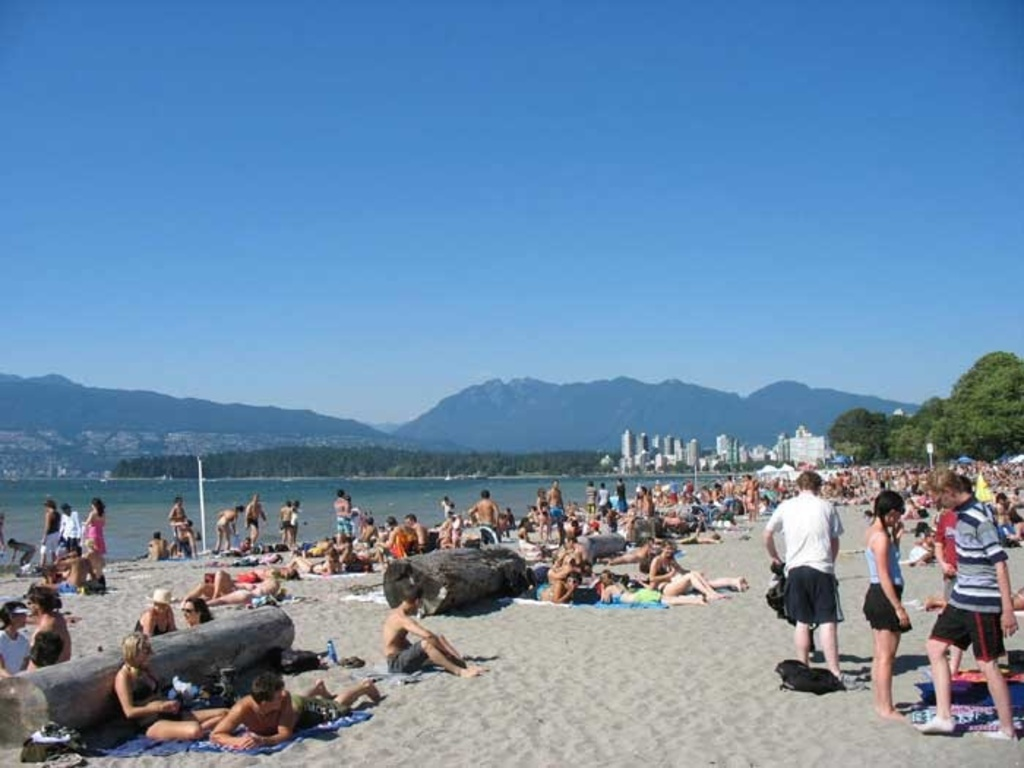 Busy day at beach