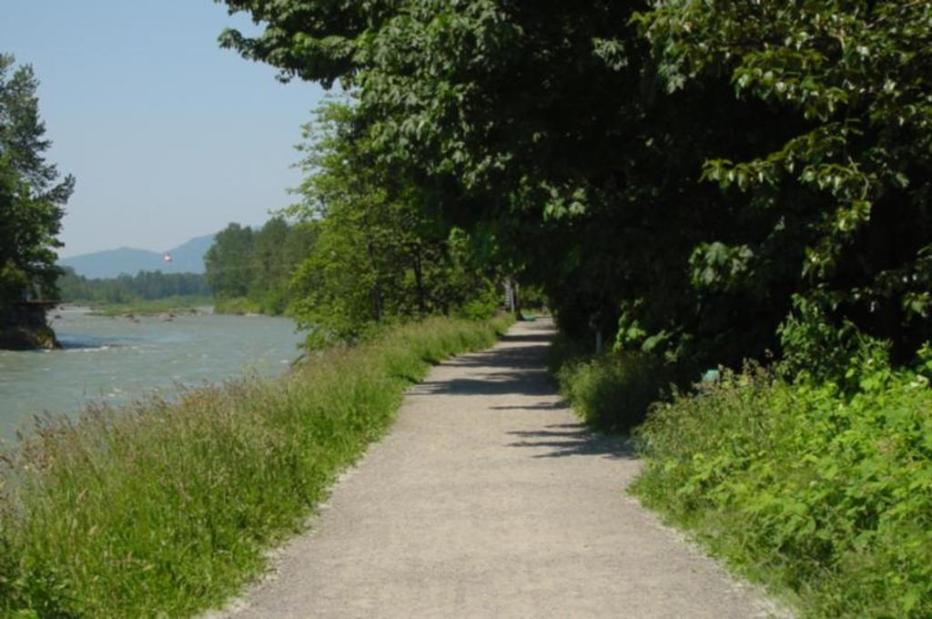 Rotary Trail - popular with cyclists, walkers, and horses, and fisherman - 1.75km