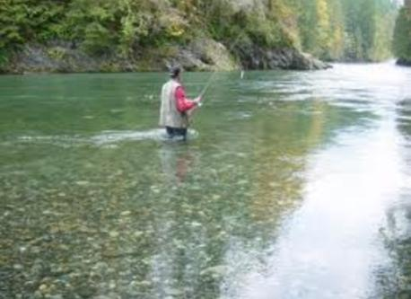 Fly fishing - walking distance