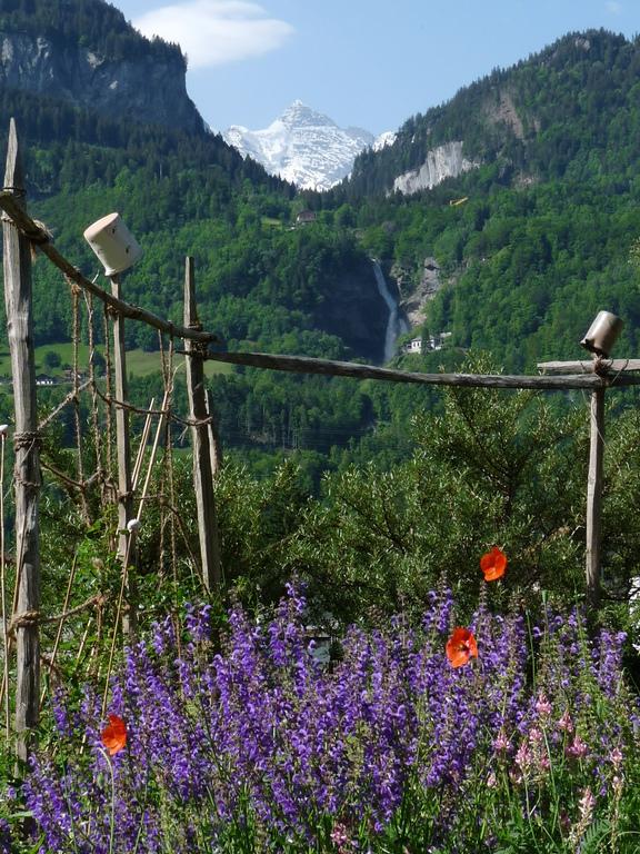 Wetterhorn, Reichenbachfall im Garten