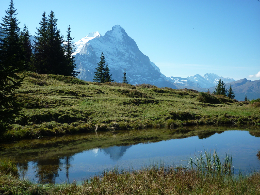 Rosenlaui, Grosse Scheidegg, Grindelwald