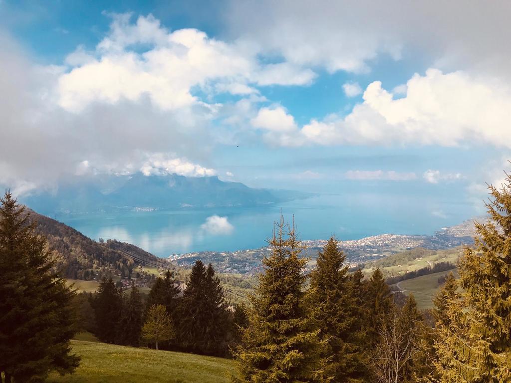Vue sur le lac Léman depuis les hauts de Montreux à trente minutes