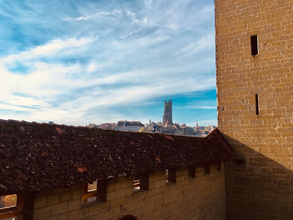 La cathédrale de Fribourg, vue depuis les remparts