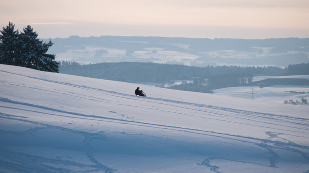 sleigh Ride down the Uetliberg in winter