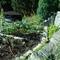 The small garden.