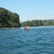River Rhine, 5 min. walk from the house - nice for swimming!