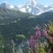 Swiss alps - appprox. 120 km by car