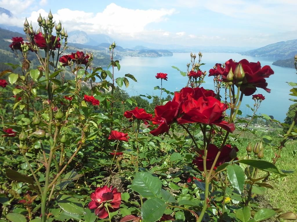Lake of Thun - approx. 120 km by car