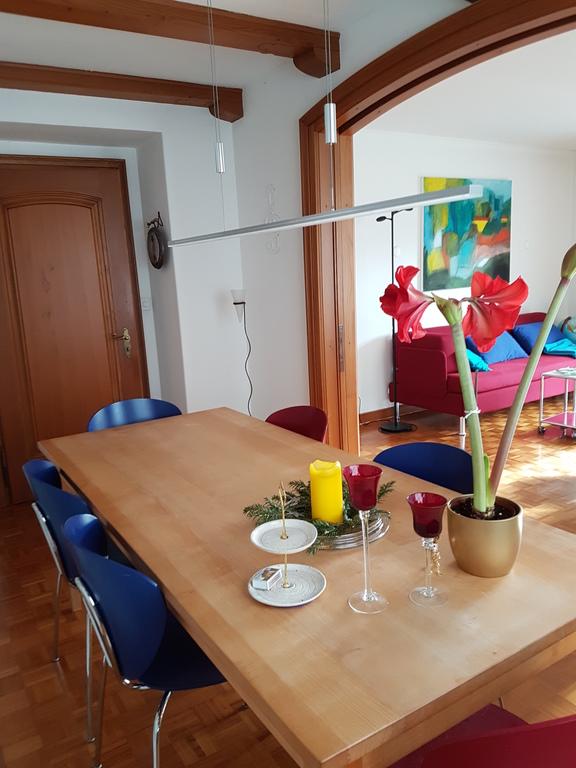 Esstisch mit Blick auf Wohnzimmer / Eatingroom looking to the livingroom