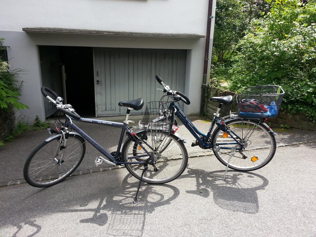 Unsere Fahrräder, die zur Verfügung stehen