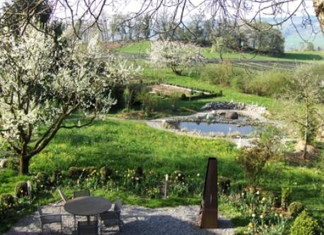 In unserem grossen Garten hat es 3 Teiche und viele Bäume