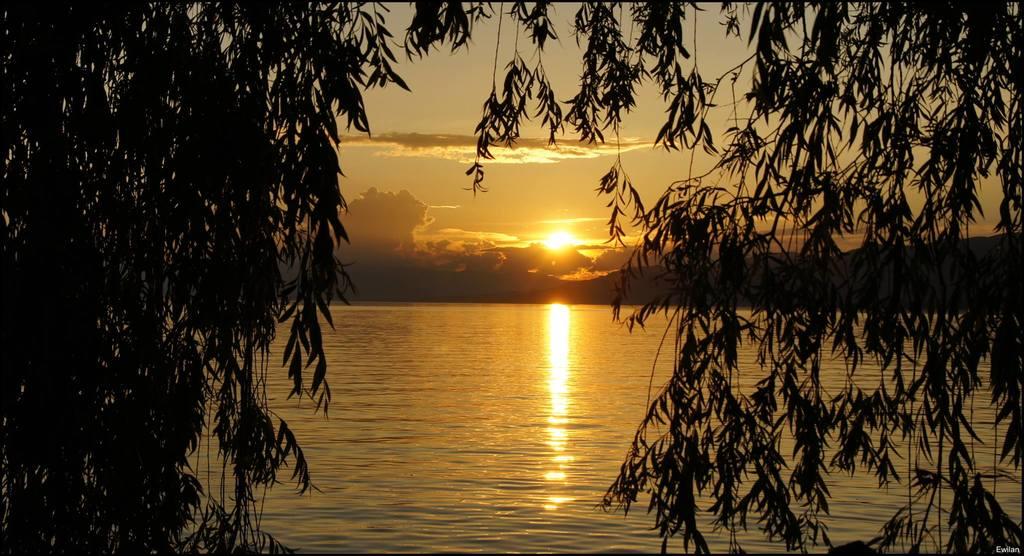 Le lac Léman
