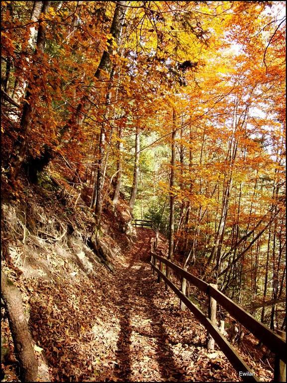Chemin des Poussettes, Champery