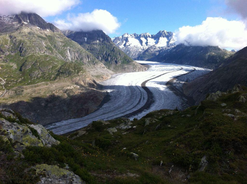 Glacier Aletsch in summer