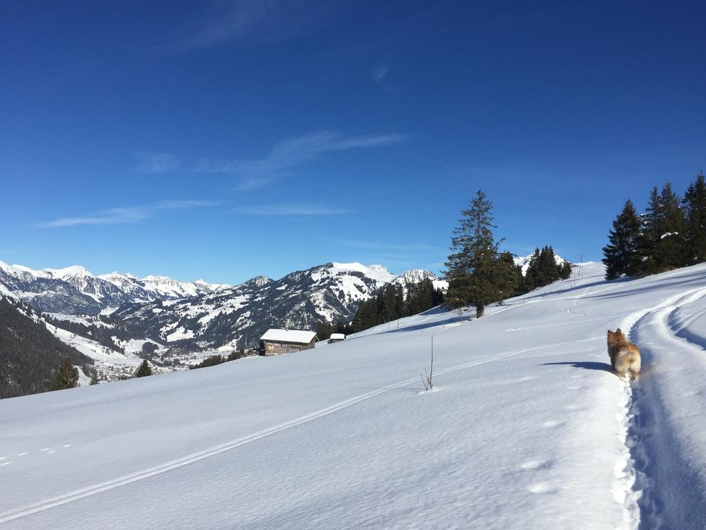 Zweisimmen Winter 2016