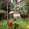 our garden in spring time