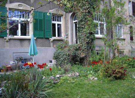 Garden & balcony