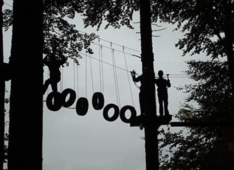 Ropes course in the forest, Gränichen 30 min by car
