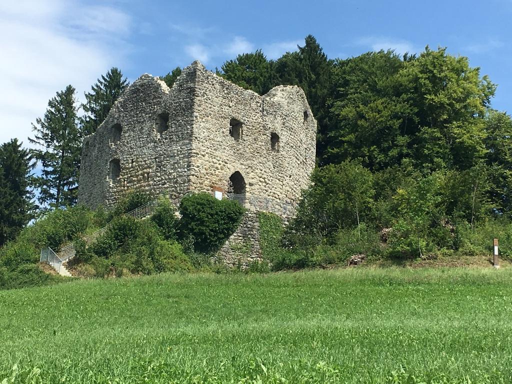 Castle Nünegg, Kleinwangen